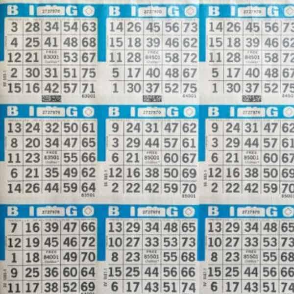 we-bingo-windsor-live-bingo-sheets